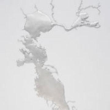 "Maya Lin, Silver San Francisco Bay, recycled silver, 48.5"" x 33.5"" x.5"", 2012. Courtesy of the artist."